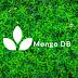 MONGO DB / MONGO DB DATABASE