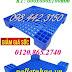 Pallet nhựa kích thước nhỏ, pallet kê hàng, pallet lót kho, pallet nhựa giá rẻ gọi 01208652740 - Huyền