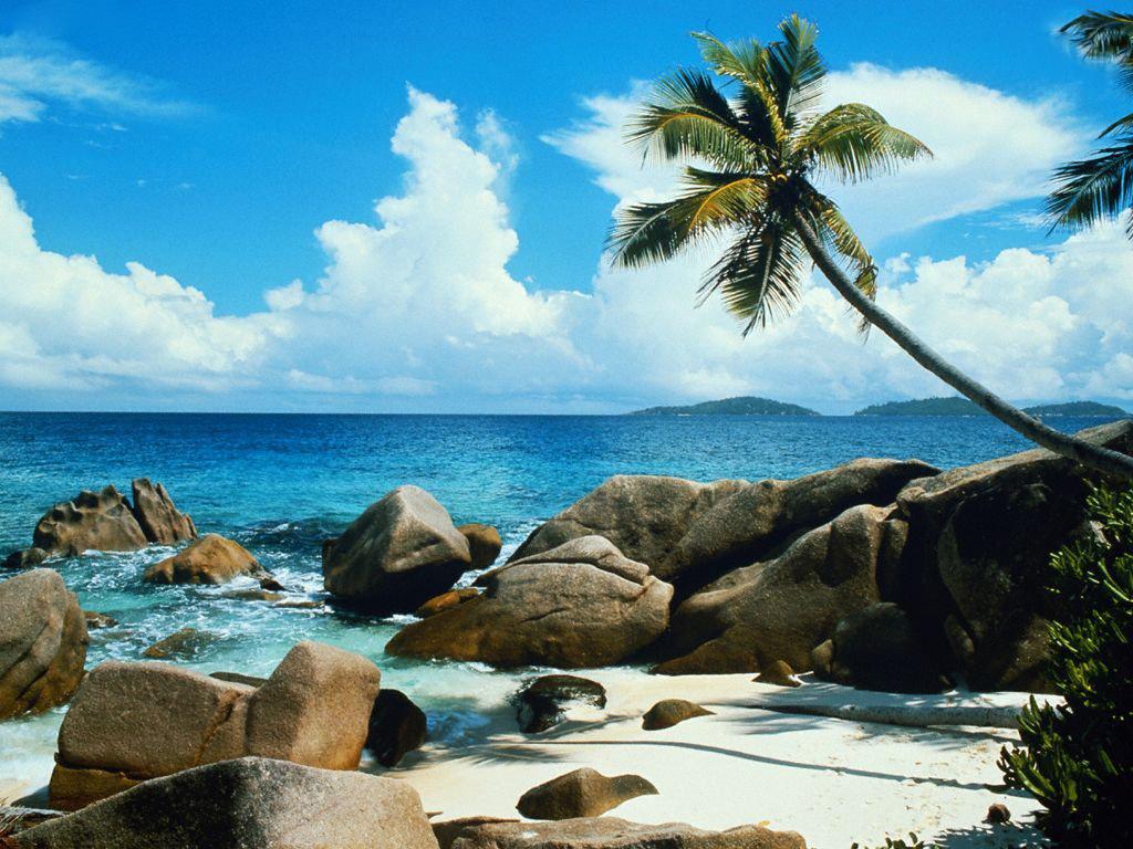Delightful Nature Beach Wwallpaper: Wallpaper: Nature Sceneries