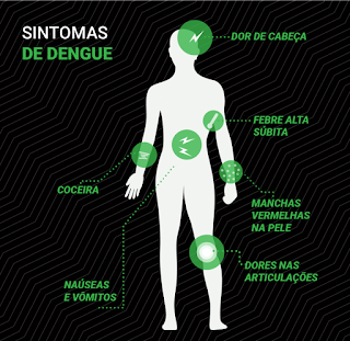 Casos de dengue no estado de São Paulo podem aumentar em março