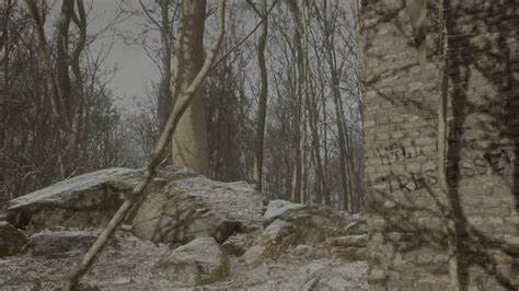 """A brick wall and trees, from the """"Abandoned"""" trailer"""