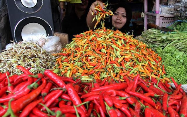 Harga Cabai di Kota Mataram Tembus Rp160.000/kg