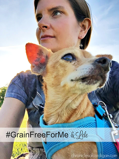 Previously broken and icky, foster dog Lele is on her way to wellness, with lots of love, antibiotics and Wellness CORE food. Read part 2 of her story! #granfreeforme