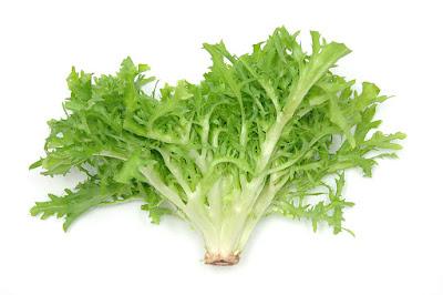 manfaat selada untuk kesehatan tubuh