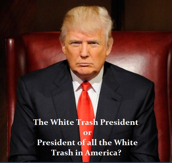 Image result for white trash president