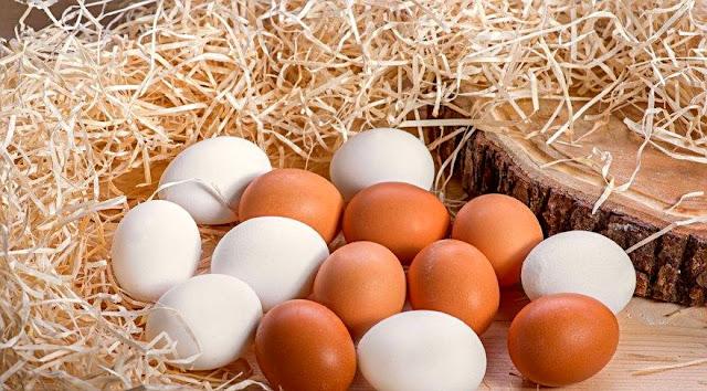 Yumurta üzerinde yapılan son çalışmalar, günde 2 ya da 3 yumurta tüketmenin, yumurtanın faydalarından yararlanmak için en uygun miktar olduğunu ortaya çıkardı.