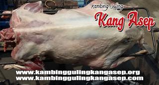 supplier kambing guling di lembang
