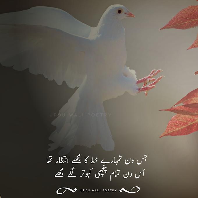 جس دن تمھارے خط کا مجھے انتظار تھا  اُس دن تمام پنچھی کبوتر لگے مجھے