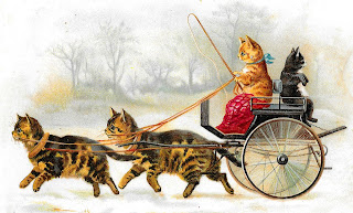 cat victorian image humorous buggy vintage illustration
