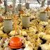 Aves e suínos têm 'bagagem' para superar desafios nutricionais
