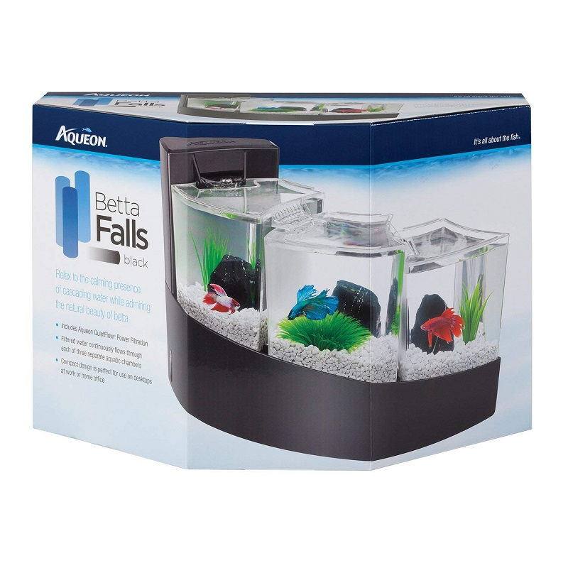 Does a Betta Need a Filter?
