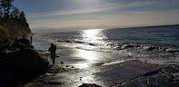 Beach at Hastie Lake Road end, Whidbey Island, Washington