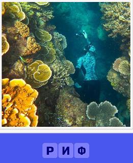 под водой человек проплывает около рифов