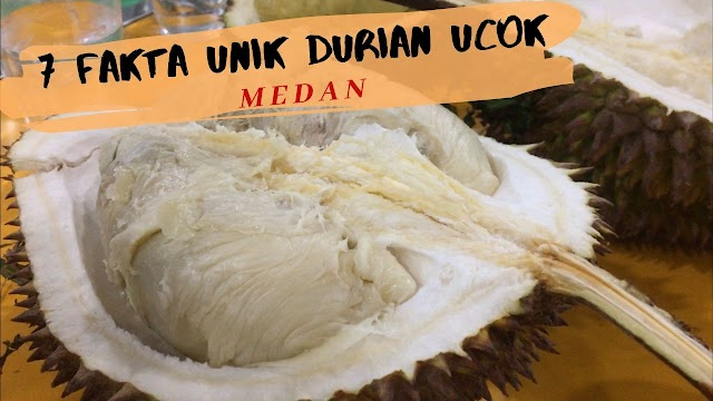 7 Fakta Unik Durian Ucok Medan