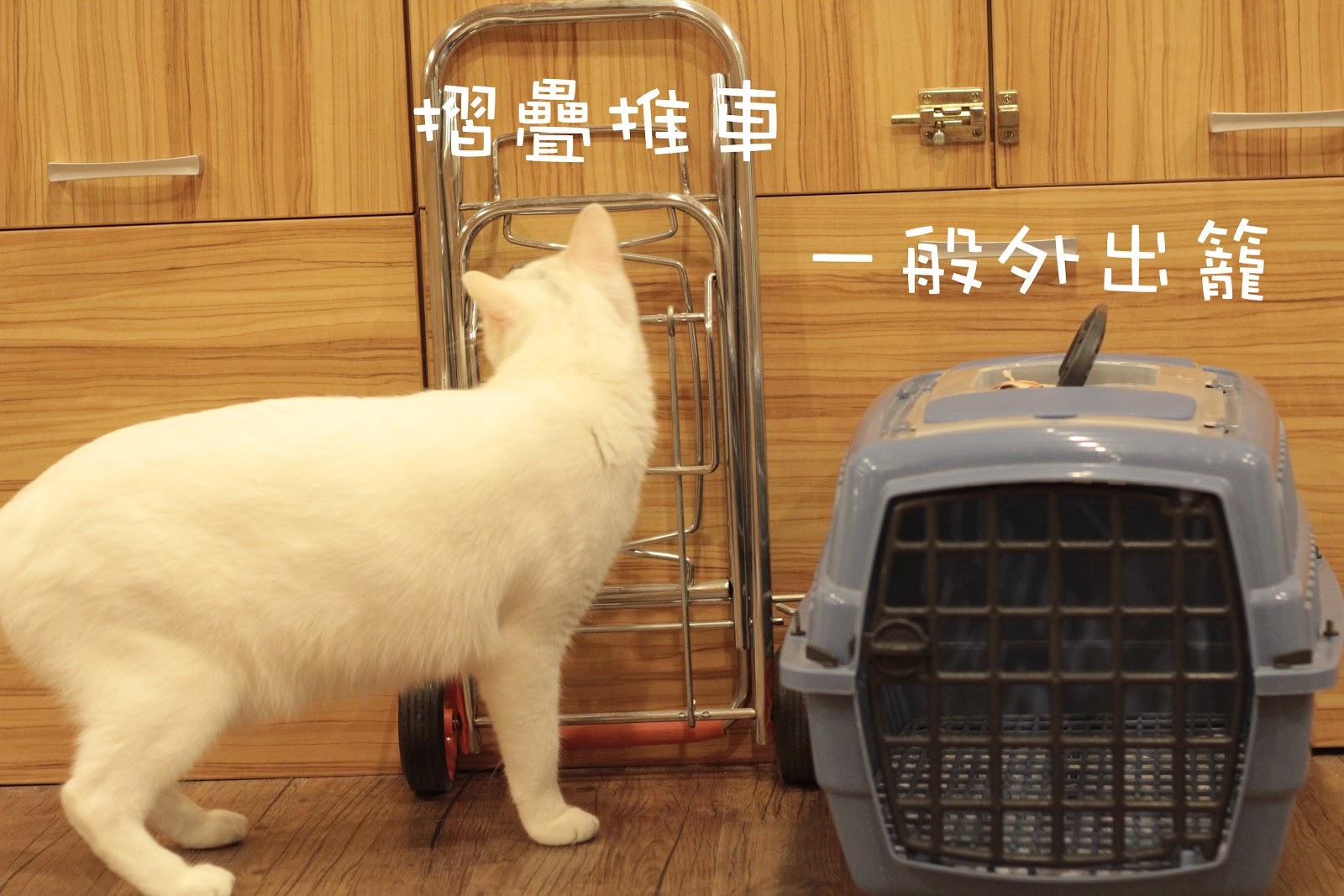 [分享]帶貓返鄉過年教戰手冊(上)外出籠-交通方式 ~ miya-甜蜜貓旅店