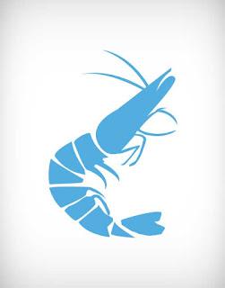 shrimp vector, prawn vector, crayfish vector, চিংড়ি ভেক্টর, বাগদা ভেক্টর, গলদা ভেক্টর, মাছ ভেক্টর, prawn vector ai, prawn vector eps, prawn vector png, prawn vector svg