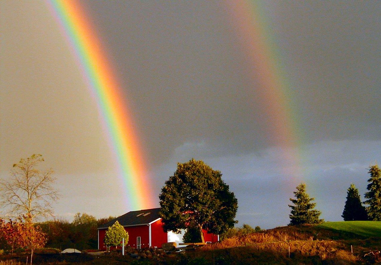 real rainbow wallpaper - photo #17