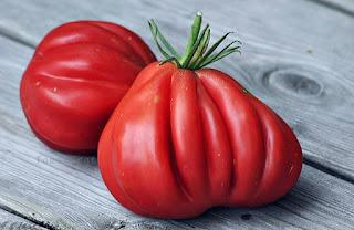 http://tomatprat.blogspot.no/2015/09/tlacolula-ribbed-tomat.html