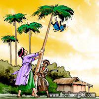 Truyện cổ tích Tấm Cám: mẹ con Cám hại Tấm