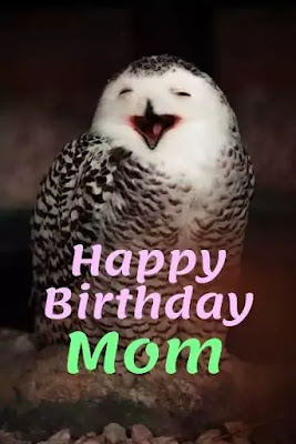 Happy Birthday Mom Funny Images Free