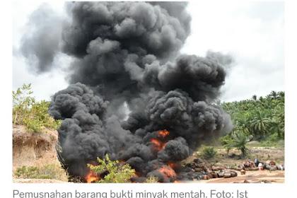 Ka Paléh! 300 Boh Drom Minyeuk Jipeumusnah di Aceh Timu