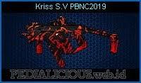 Kriss S.V PBNC2019