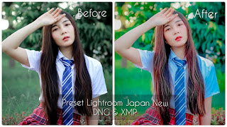 Preset Lightroom Japan New DNG & XMP