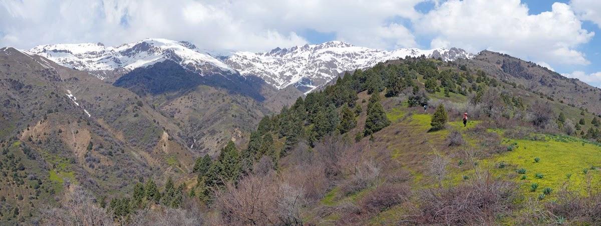 DSC02431 Panorama
