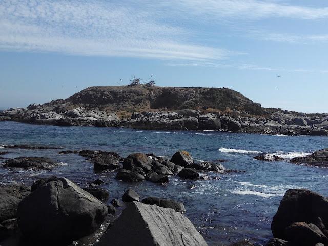 Isla de Cachagua