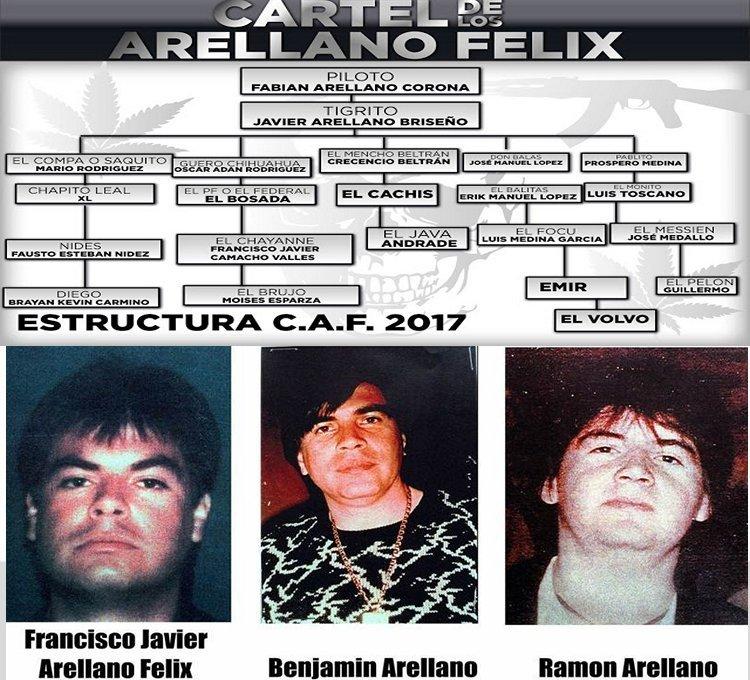 Hijos de Ramón y Javier Arellano Felix, heredarón el CAF