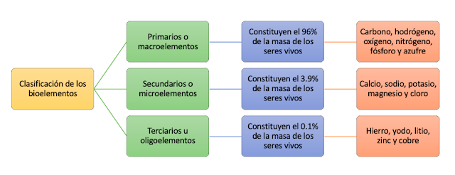 diagrama de flujo clasificación de los bioelementos