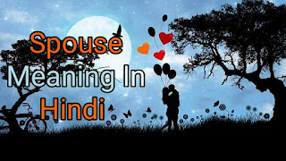 Spouse Meaning In Hindi