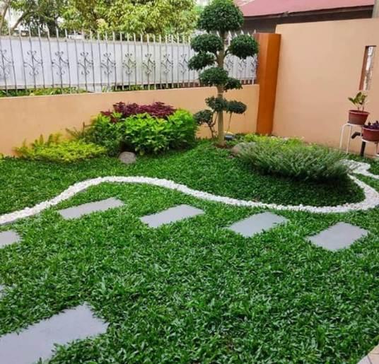 Taman rumah minimalis type 45 kombinasi rumah hijau dan bunga