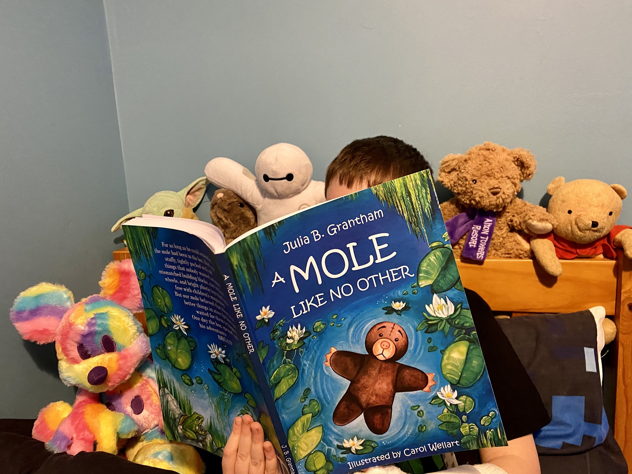 A Mole Like No Other Book