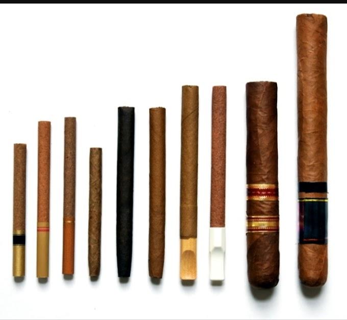 Tobacco | Cigarettes | Cigar