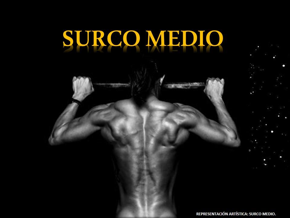 SIN CIRUGÍAS en LÍNEA: LA IMPORTANCIA del SURCO MEDIO POSTERIOR de ...