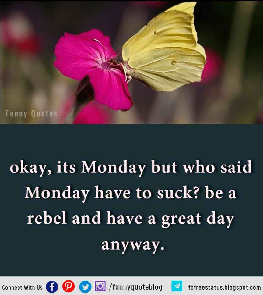 okay, its Monday but who said Monday have to suck? be a rebel and have a great day anyway.