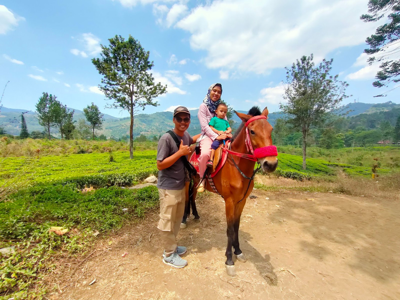 Agrowisata Gunung Mas, Destinasi Wisata Di Puncak Bogor ...