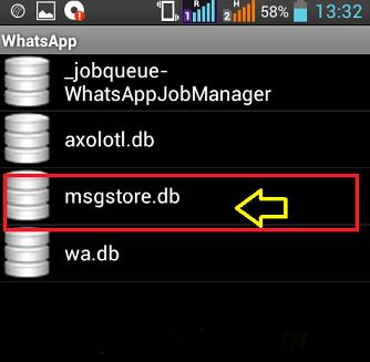 View Whatsapp  db File