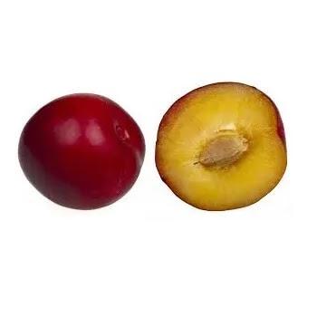 आलुबुखार, Plum fruits name in Marathi