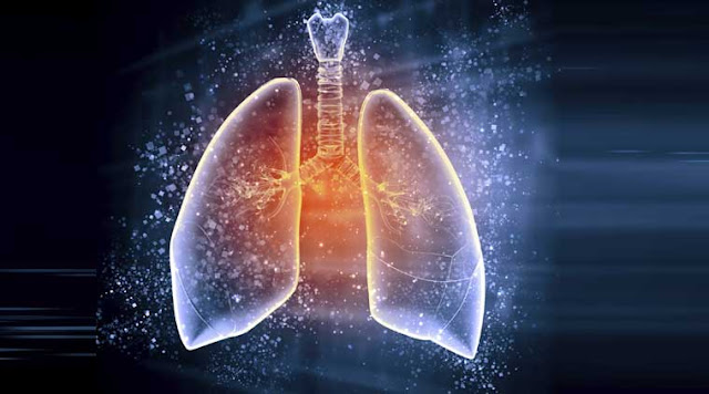 Detoxify Your Lungs: 8 Must-Do Strategies To Heal From Respiratory Problems Lungs-main
