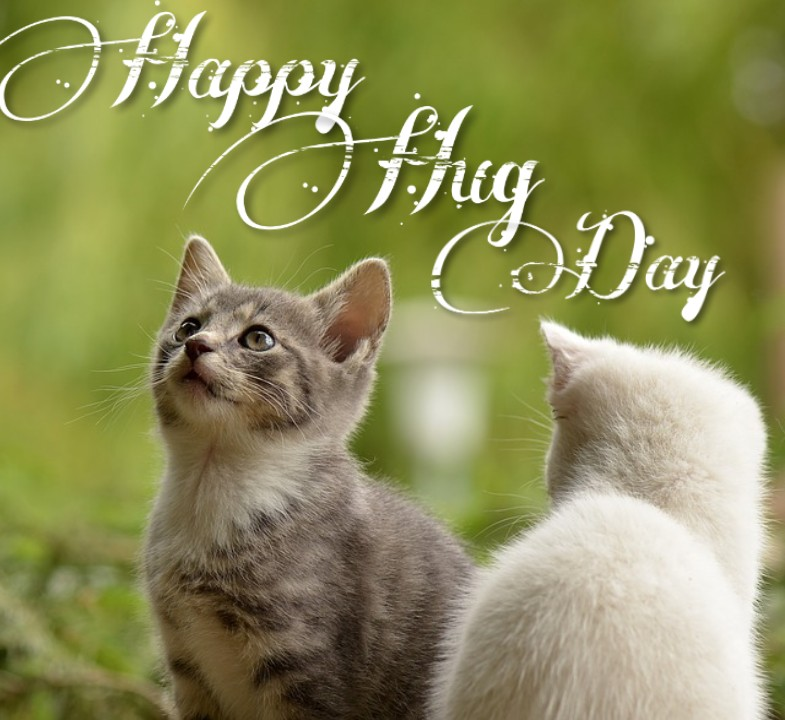 hug day 2020 images