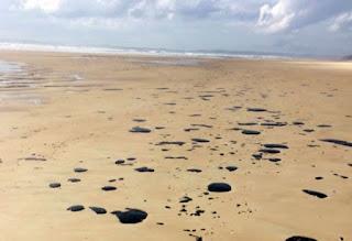 Óleo na Praia do Norte