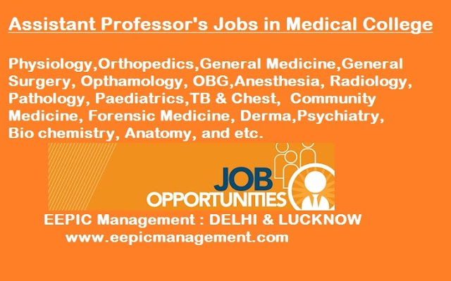 Assistant Professor Of Physiologygeneral Medicineortho