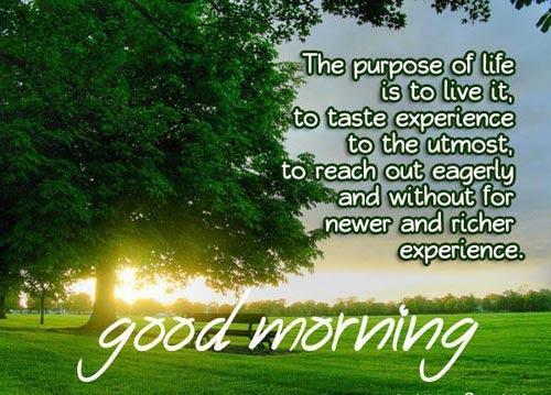 good morning shayri in marathi language good morning