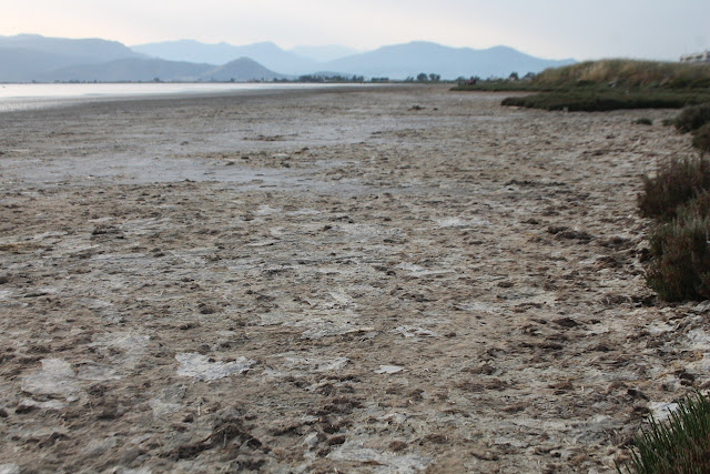 Δεν θα πιστεύετε τι είναι αυτό το λευκό στρώμα που καλύπτει παραλία στο Ναύπλιο