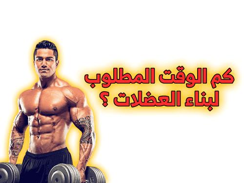 كم الوقت المطلوب لبناء العضلات ؟