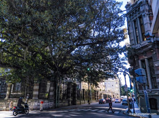 Avenida Alvear, Recoleta, Buenos Aires