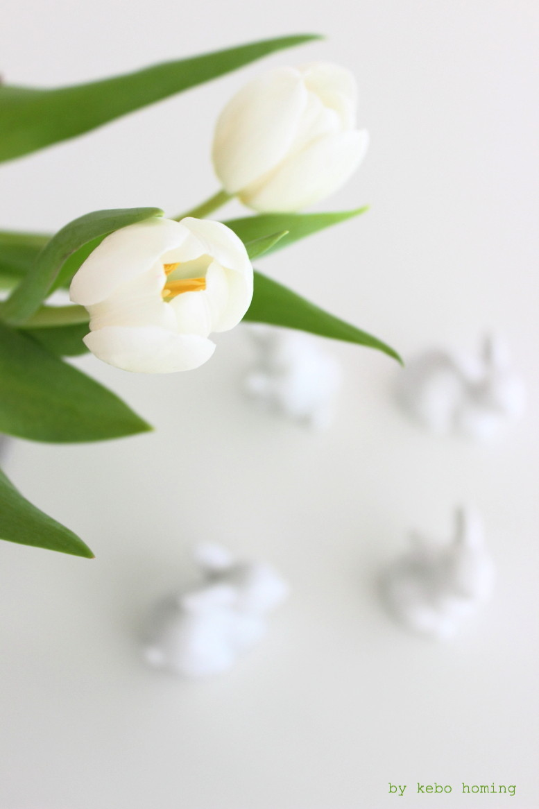 Weiße Tulpen bei den Blumen am Freitag, dekoriert mit Blaubeerzweigen und weißen Porzellanhäschen passend zu Ostern, auf dem Südtiroler Food- und Lifestyleblog kebo homing, Styling und Fotografie