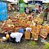 MPF denuncia associação criminosa baiana especializada em tráfico de animais silvestres que atuava na Bahia